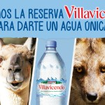 KV Animales