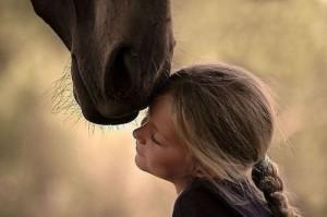 encuentro equino anastasio